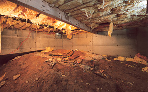 Crawl Space Moisture Barrier before in Green Bay